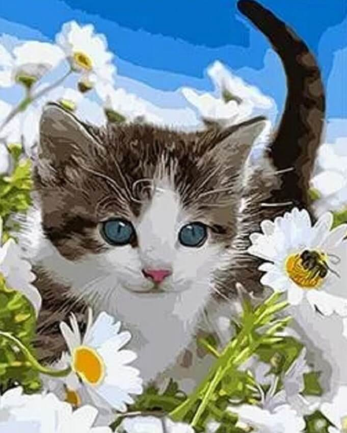 Adorbale Kitten In Daisy Garden - DIY Painting