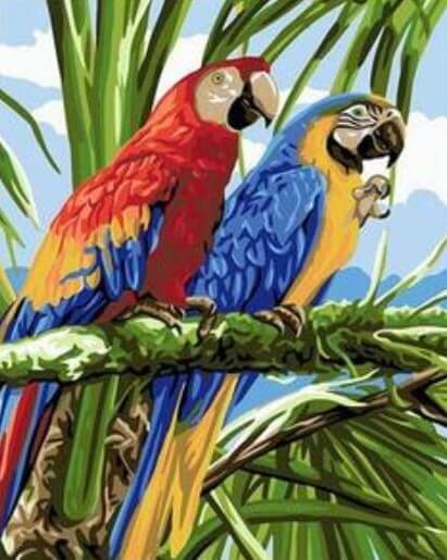 African Macaw Parrots - Paint by Numbers