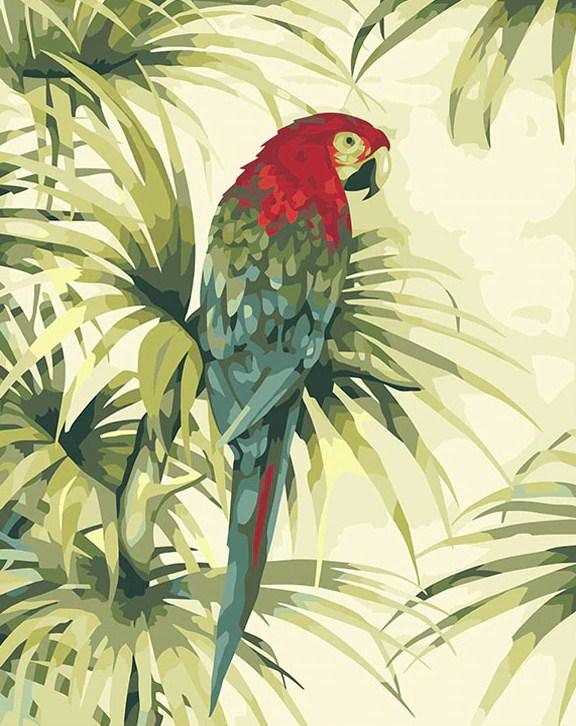 Beautiful African Macaws DIY Painting
