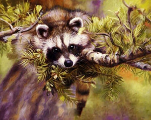 A Naughty Raccoon Paint by Numbers Kit