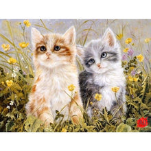 Load image into Gallery viewer, kittens paint by numbers