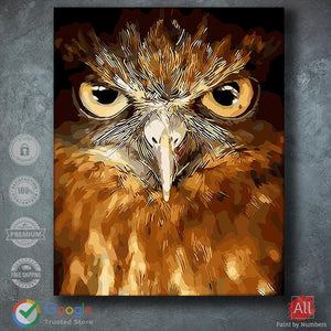 Staring Eagle - Paint by Numbers
