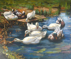 Beautiful Painting of Pet Ducks In Pond