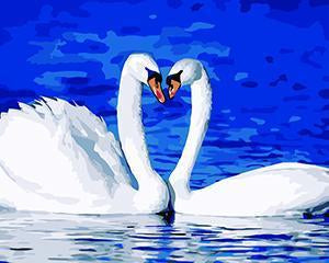 Beautiful Painting of Swan IN Nature