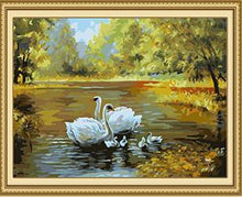 Load image into Gallery viewer, Beautiful Painting of Swan IN Nature