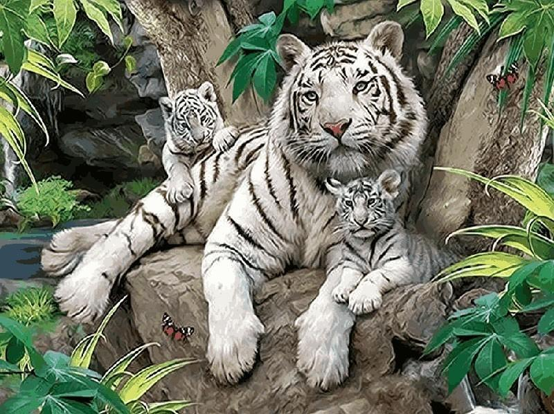 Amazing Painting of White Tiger Family