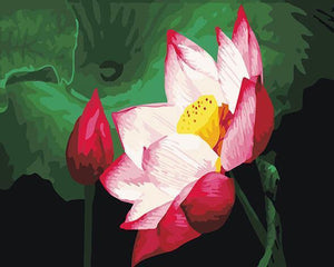 Lovely Painting of White Flower