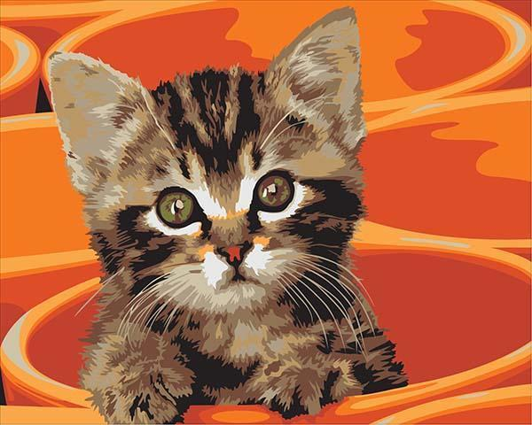 Painting of Adorable Stripy Cat Painting by Numbers
