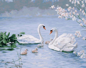 Amazing Painting of Swan Family