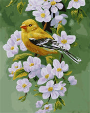 Load image into Gallery viewer, A Scenery of Yellow Sparrow & White Lilly
