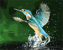 Load image into Gallery viewer, A Kingfisher Out of Water