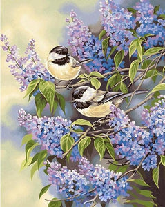 Birds in Japanese Wisteria Flowers