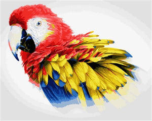 Stunning Painting of African Red Macaw