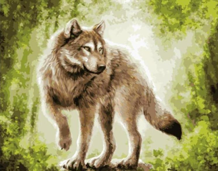 Painting of Grey Wolf In Wild