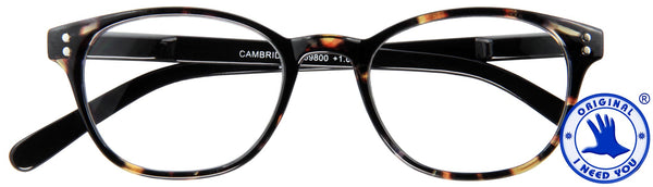 Lesebrille Cambridge I need you havanna schwarz