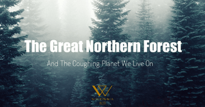 The Great Northern Forest And The Coughing Planet We Live On
