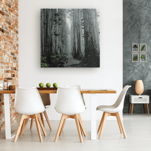 Togakushi Forest - Canvas Print Canvas Wall Art 3 - TuWillows
