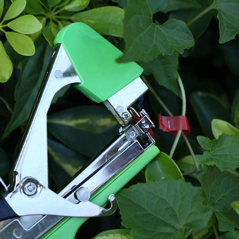 Image of Plant Tying Tool For Stem Strapping