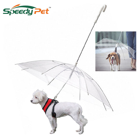 Image of High Quality Transparent Dog Umbrella