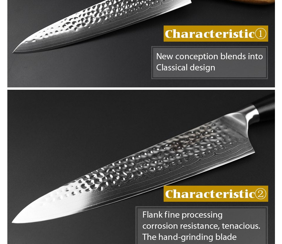 10 Inch Pro Japanese Chef Knife
