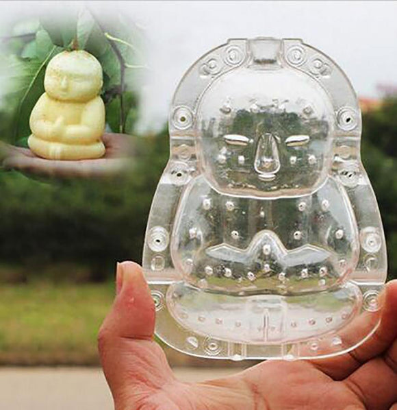 Buddha-shaped Apple and Pear Growth Forming Mold