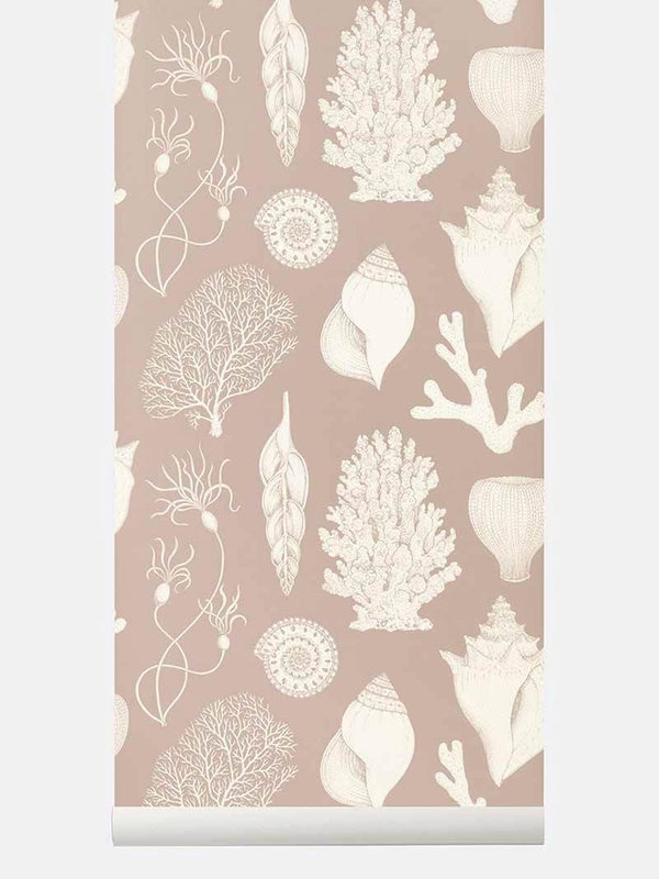 Katie Scott Wallpaper - Shells - Dusty R