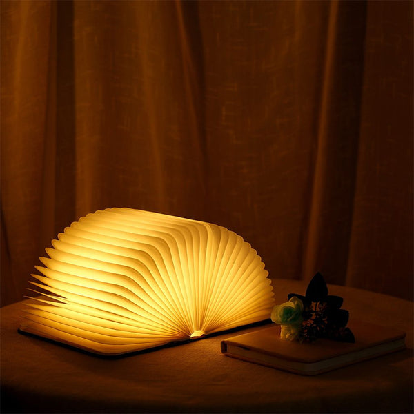 Beautiful Book Lamp