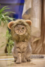 Load image into Gallery viewer, Cat Lion's Mane Costume