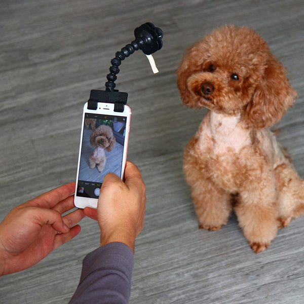 Cute Selfie Stick for Pets
