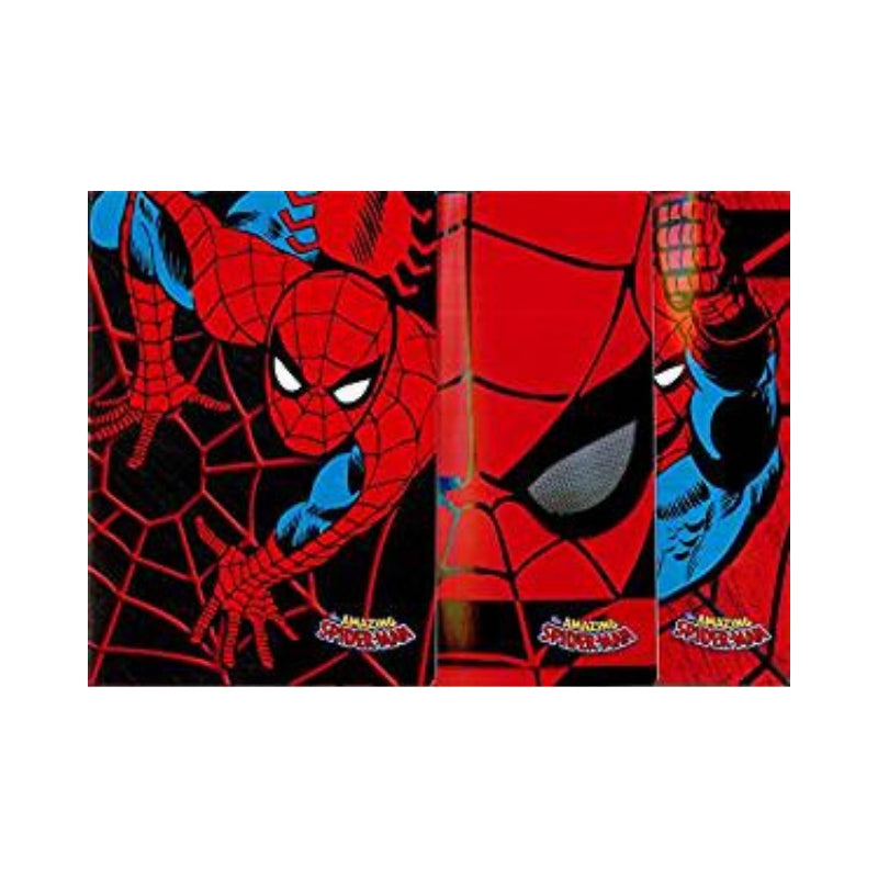 quaderno spiderman riga b