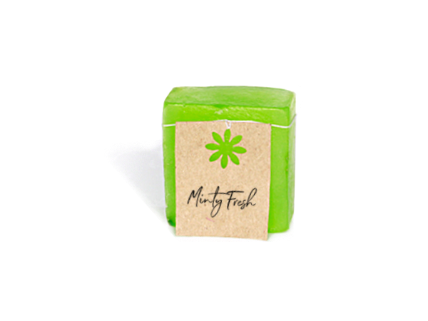 Minty Fresh Shampoo Bar