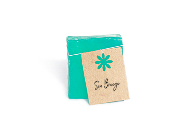 Sea Breeze Shampoo Bar