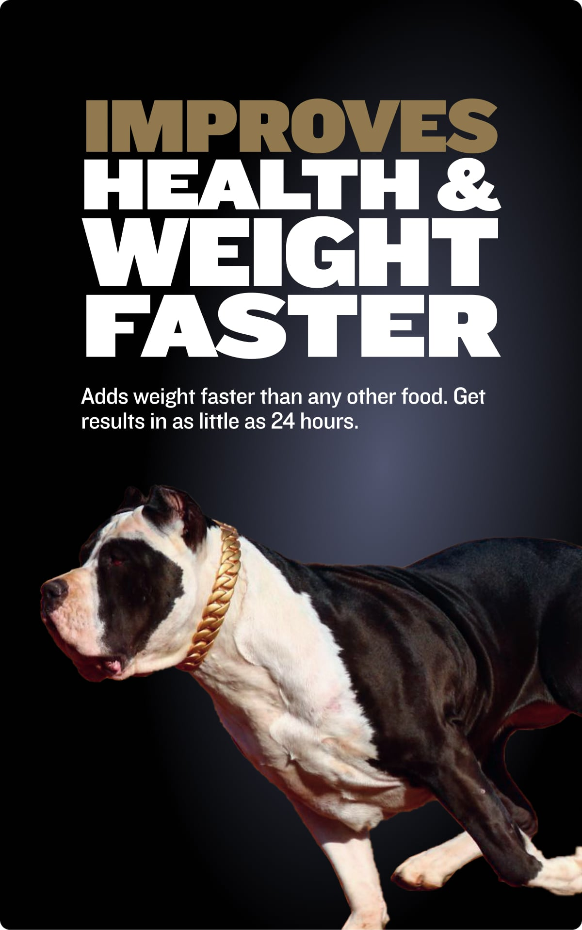 Bully Max Pro improves health and weight faster. Professional series dog food.