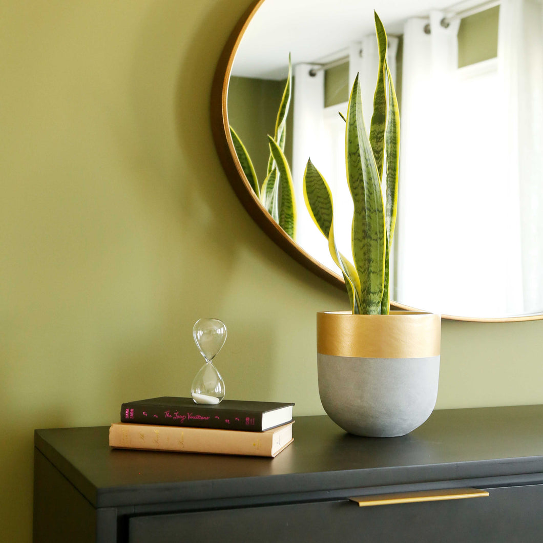 Natural gold rim pot on a dresser