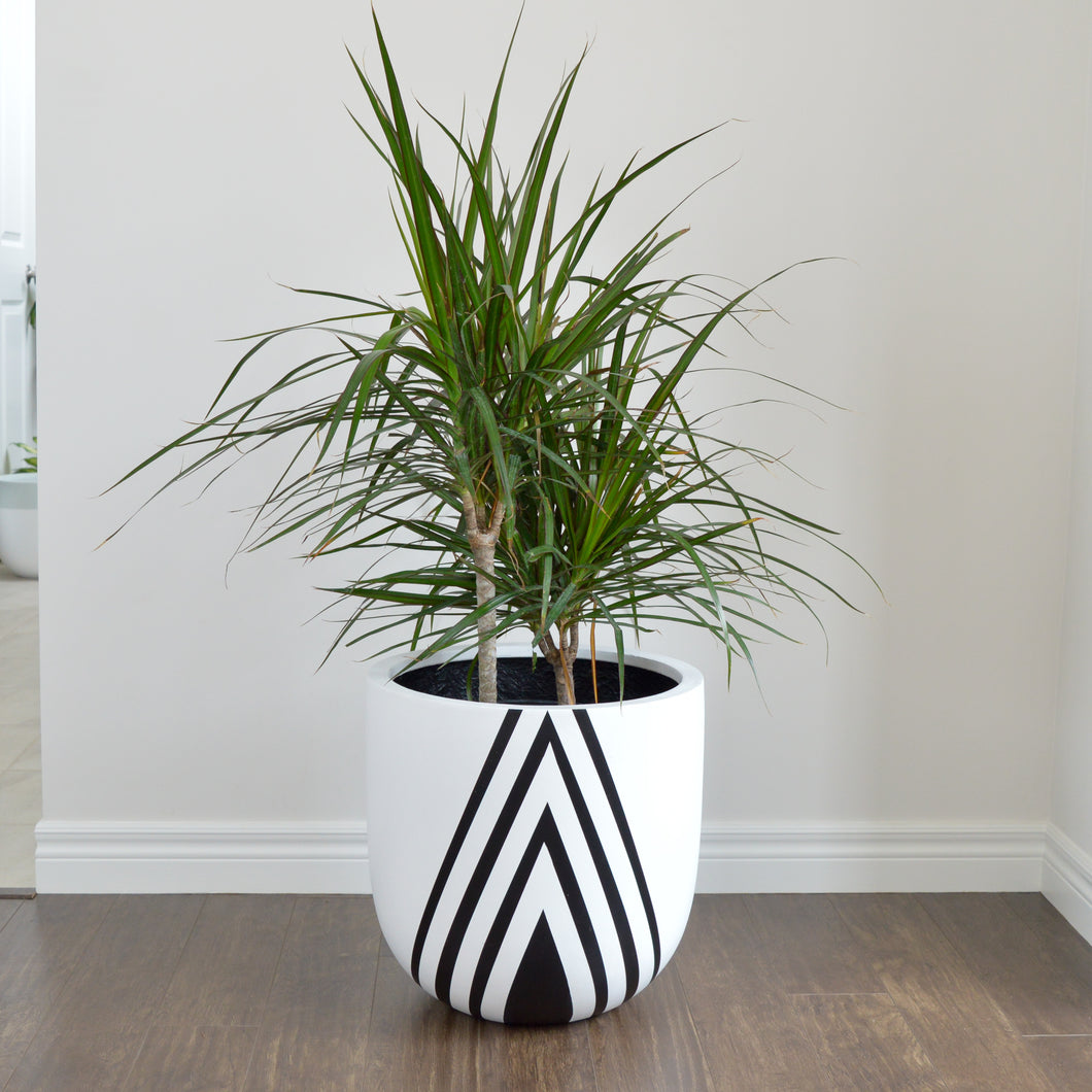 light weight white plant pot with modern black triangle design
