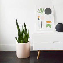 Mid Century Modern planter in baked clay colour way