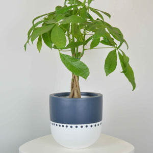 Navy and white bohemian inspired planter
