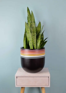 RETRO POT | PLANTER