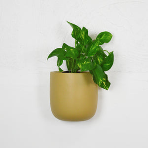 SOLID TALL WALL PLANTER | POT