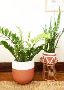 AZTEC POT | PLANTER