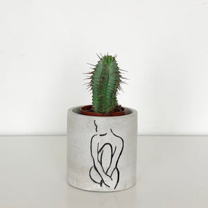 FORGOTTEN PROPERTY CONCRETE POT | PLANTER