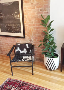 white and black diamond design planter pot with ficus Audrey plant next to cow hide print chair