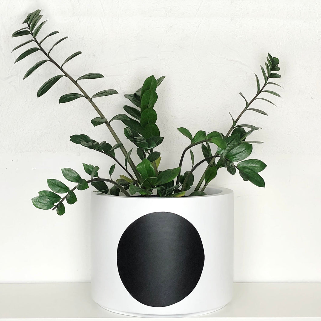 White Low Cylindrical Planter with black sphere design
