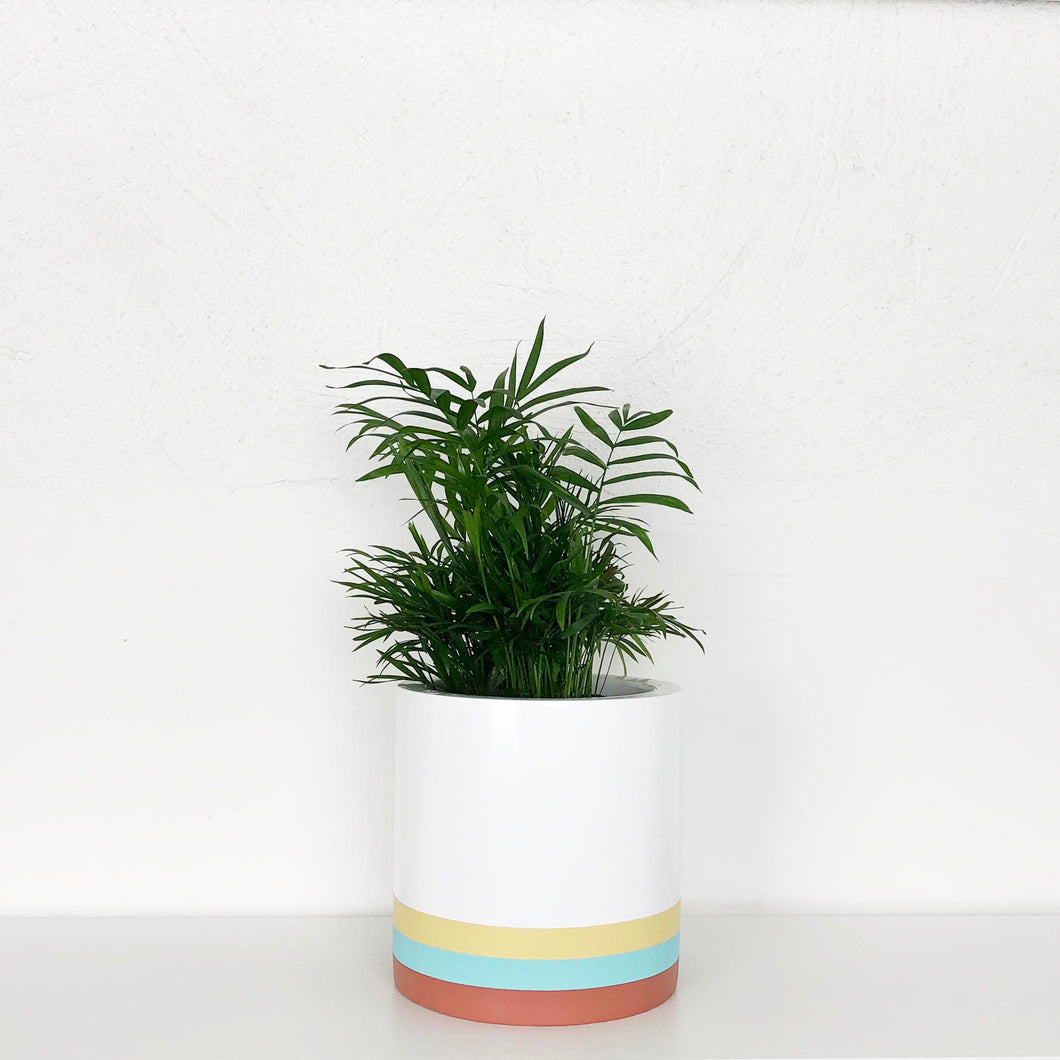SADIE CYLINDER POT | PLANTER