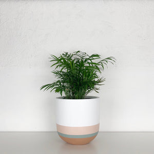 OVERLAY POT | PLANTER