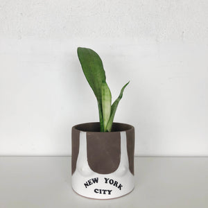 group partner terracotta boob planter with New York city tank top and dark skin tone
