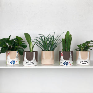 collection of hand painted boob planters