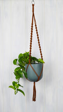 Rust plant hanger with a Common House Studio Pine green planter pot