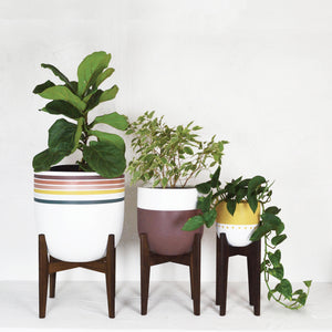 COMMON HOUSE STUDIO MID CENTURY MODERN PLANT STANDS X THE SATIVA