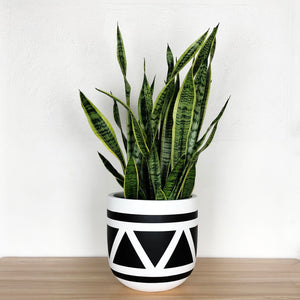 large white planter with black triangle pattern